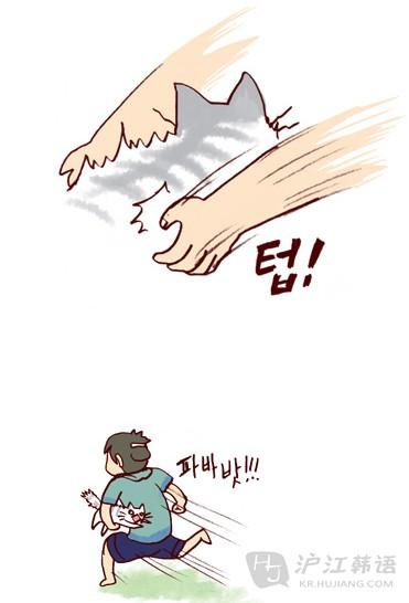 """看漫画学韩语:《我的小猫和老狗》之""""像小孩儿"""""""