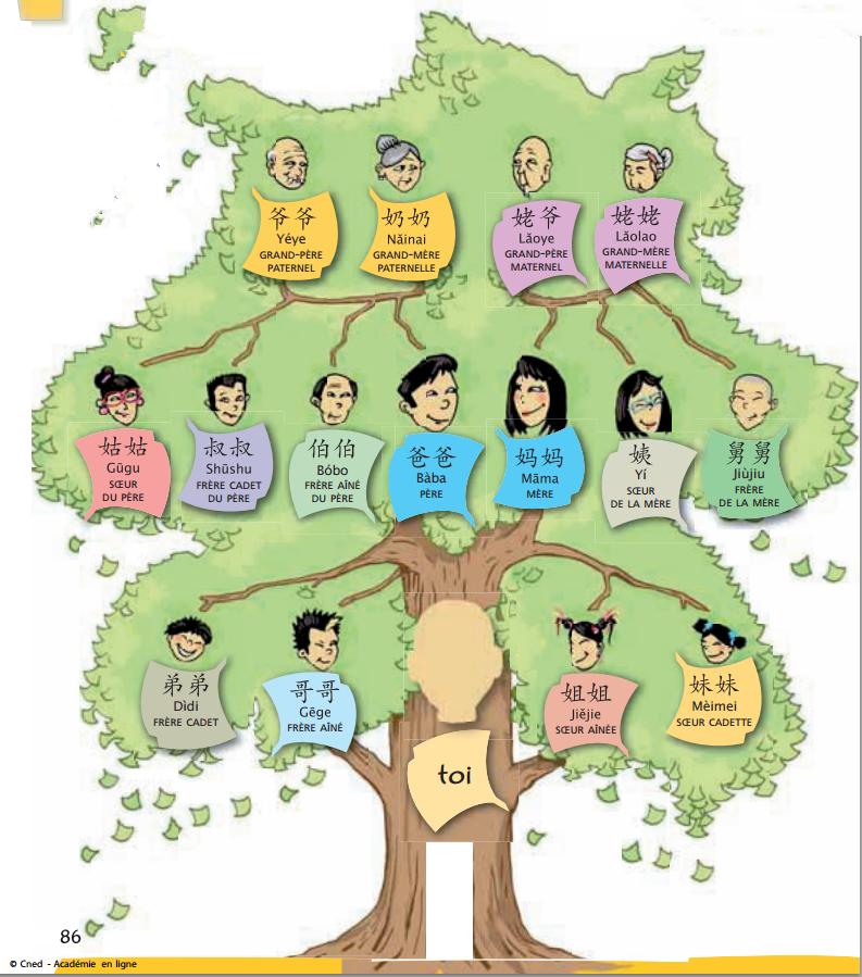 那么,每一个家庭成员对应的辈分和称谓又是什么呢?
