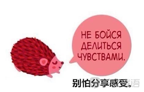 俄罗斯漫画:小萌物给你带来暖心正能量!