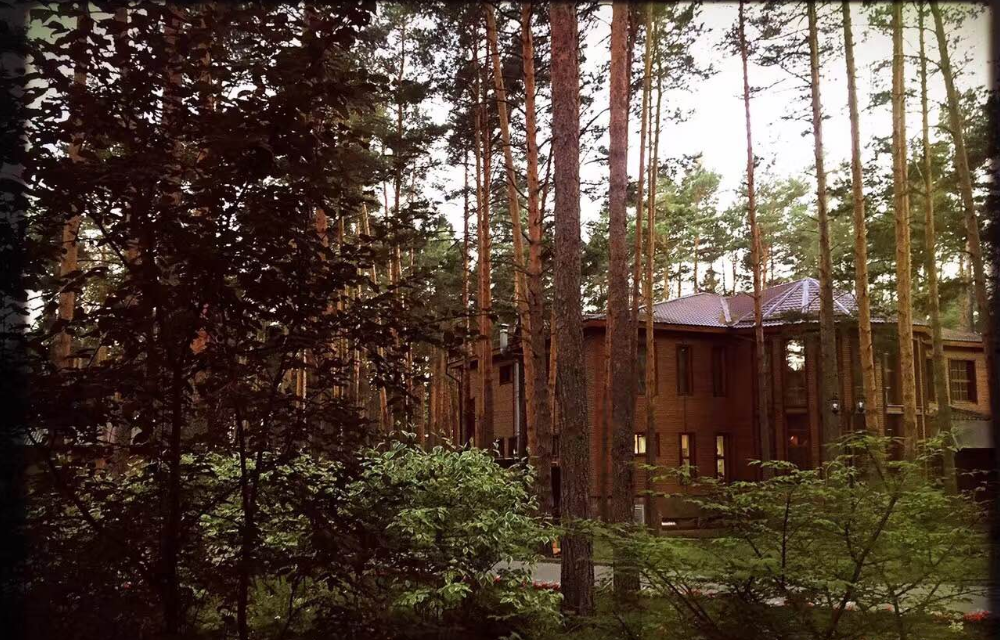 俄罗斯的乡村小别墅到底长啥样?
