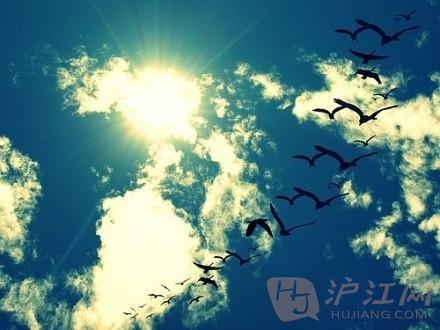笨鸟也可以高飞:一个半百老太的英语学习历程